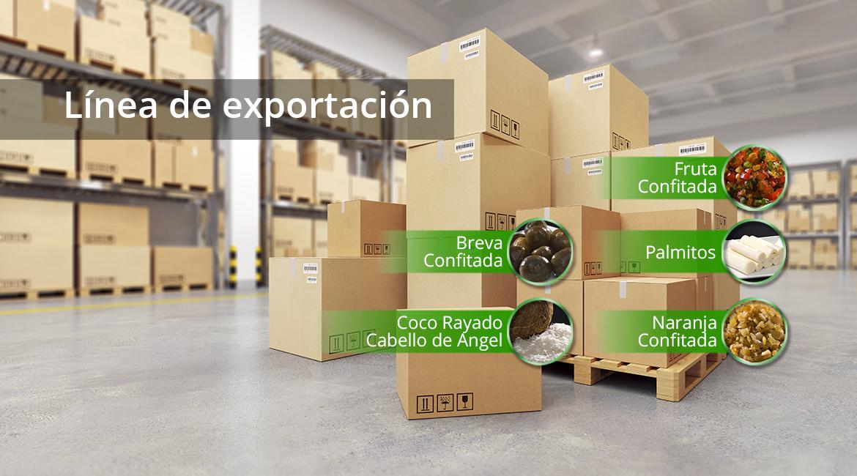 linea_exportacion